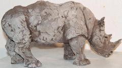 Rhinocéros 3