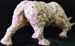 Rhinocéros 6